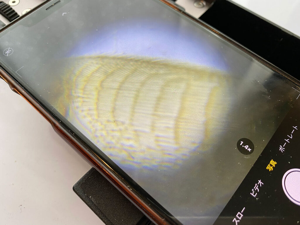 DIPLLE顕微鏡の画像02